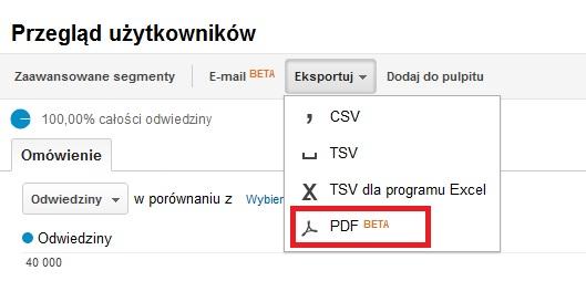 Google Analytics - PDF